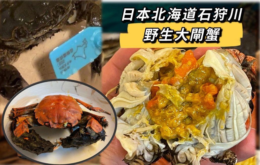 japan crab